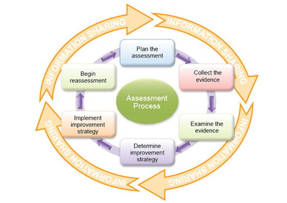 Assessment Process